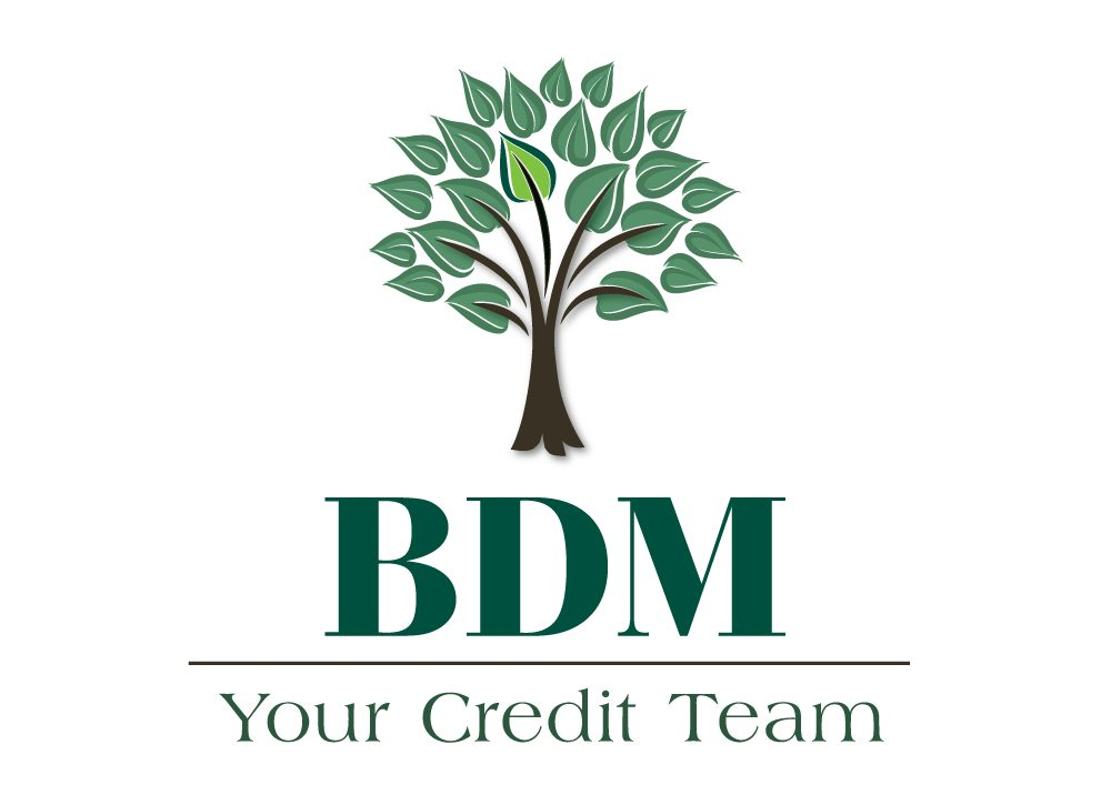 BDM Logo - Before